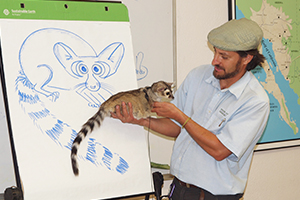 Educator with Ringtail