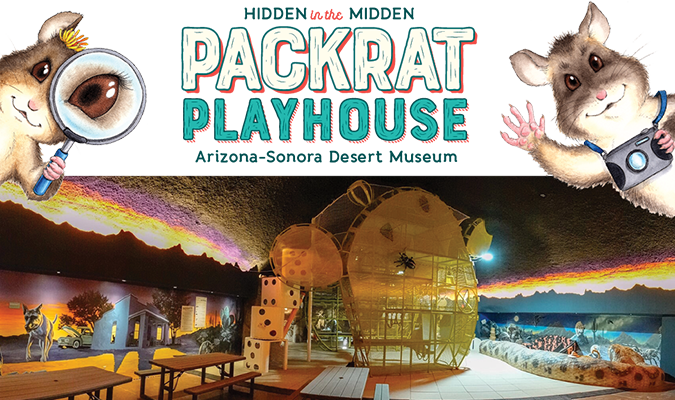 Hidden in the Midden - Packrat Playhouse - explore daily from 10 am to 4 pm