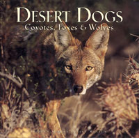 Cover: Desert Dogs: Coyotes, Foxes & Wolves