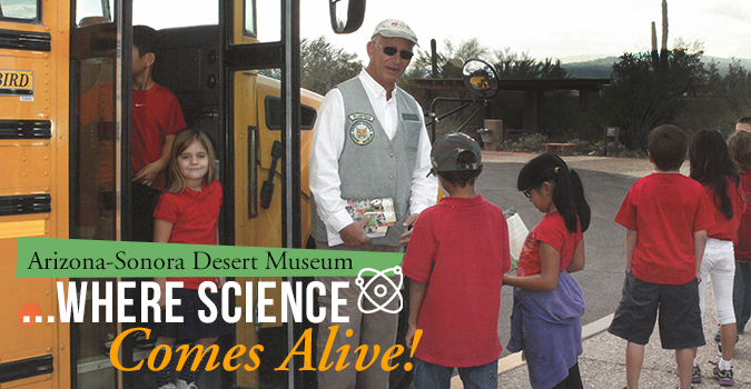 Children with docent by school bus